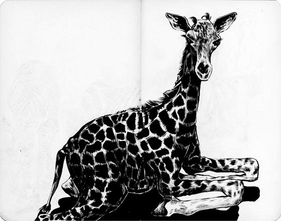 anna-lubinski-illustration-carnet-de-croquis-museum-girafon