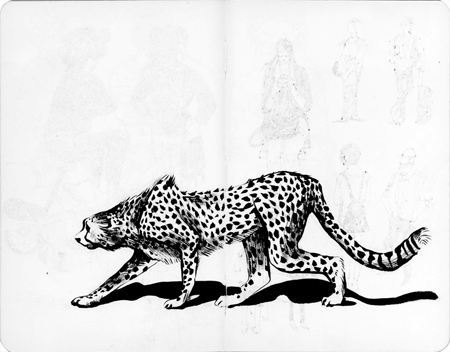 anna-lubinski-illustration-carnet-de-croquis-museum-guepard-cheetah