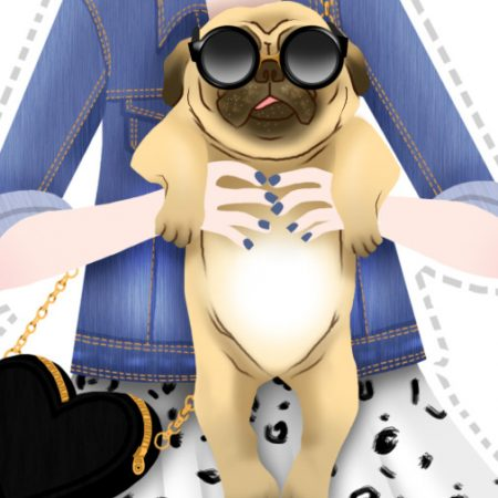 monika-pug-illustration-lookbook-anna-lubinski