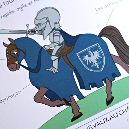 anna-lubinski-les-chevaliers-larousse-couv